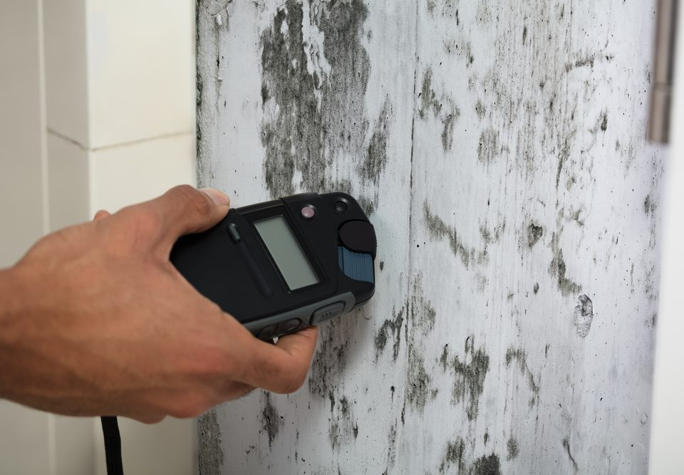 Mold Remediation & Testing for Your New Utah Home